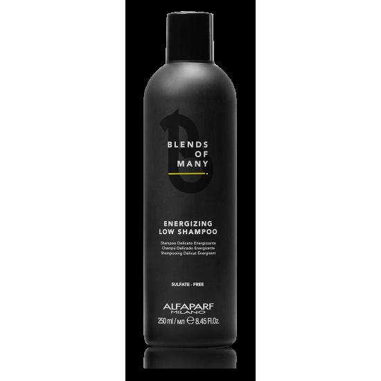 Energizing Low Shampoo - Plaukus stiprinantis šampūnas 250ml